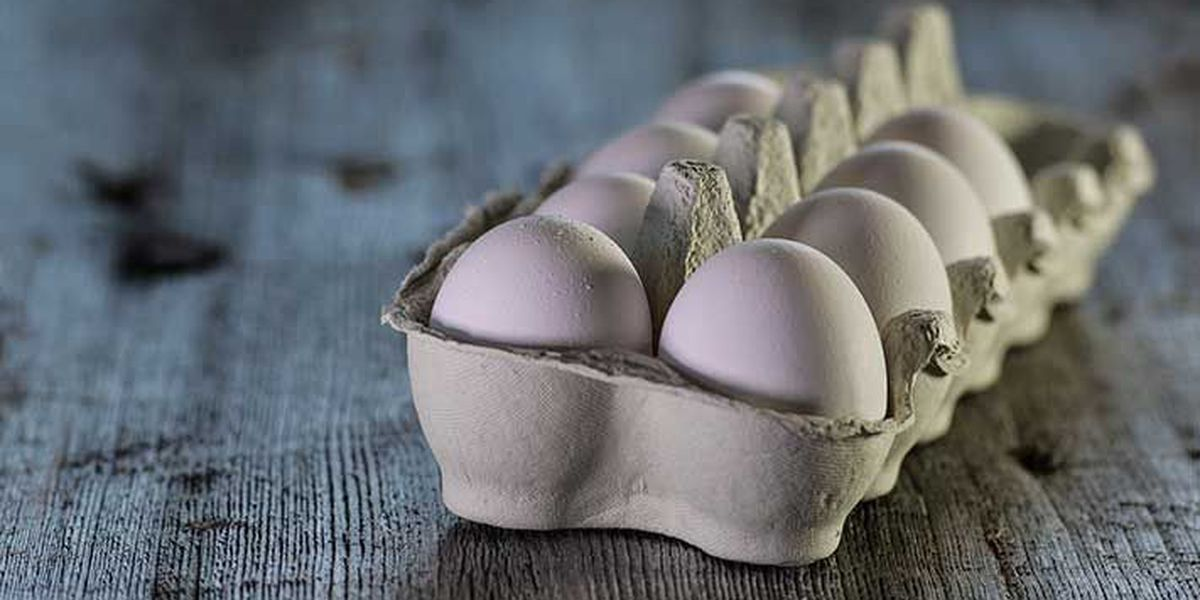 Indiana farm tied to recall of 200 million eggs due to salmonella concerns