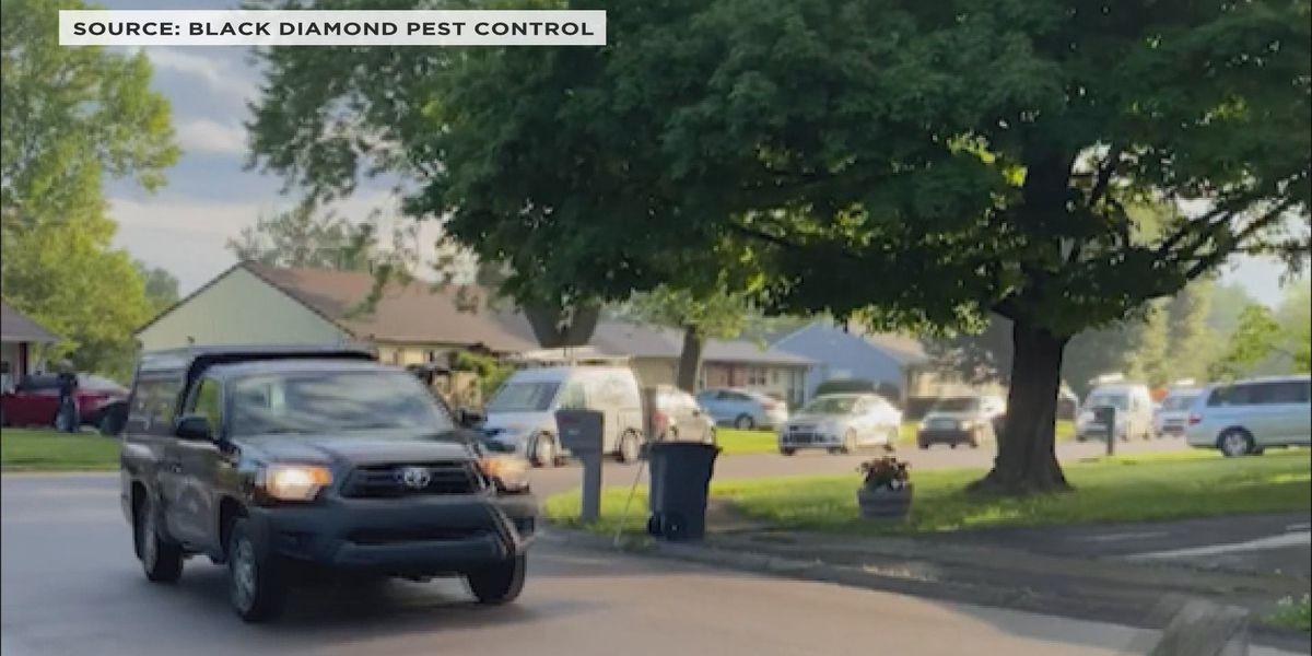 Black Diamond employees honor coworker killed in crash