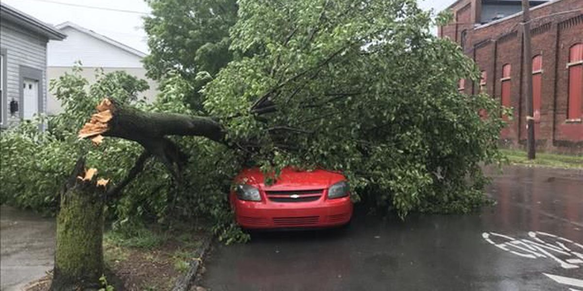 PHOTOS: Viewers share pics of storm damage