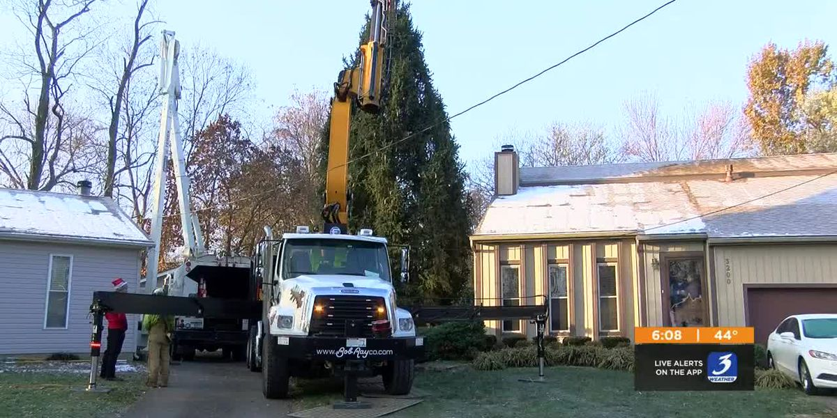 Christmas tree cut down for Light Up Louisville
