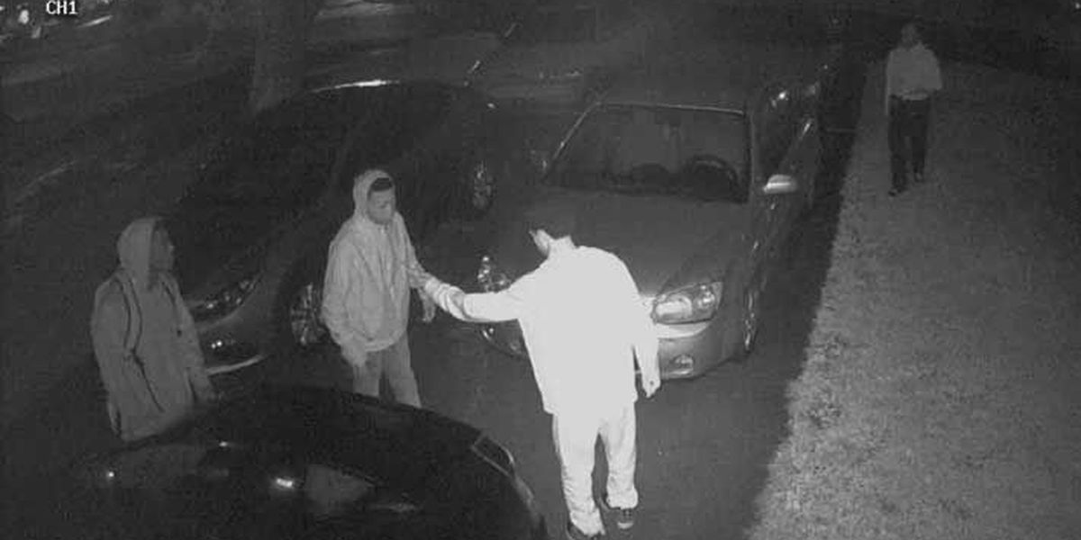 Thieves turn to technology to break into cars