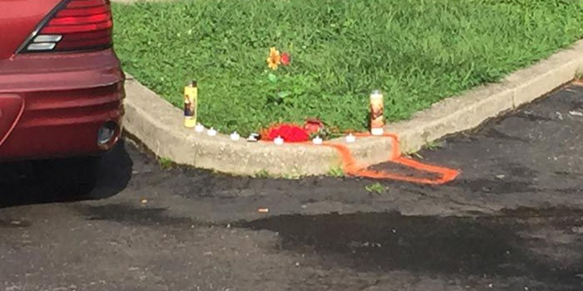 Small child dies after being struck by car in Shelbyville