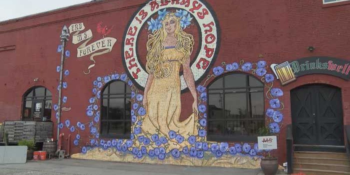 Butchertown mural showcases a world without MS