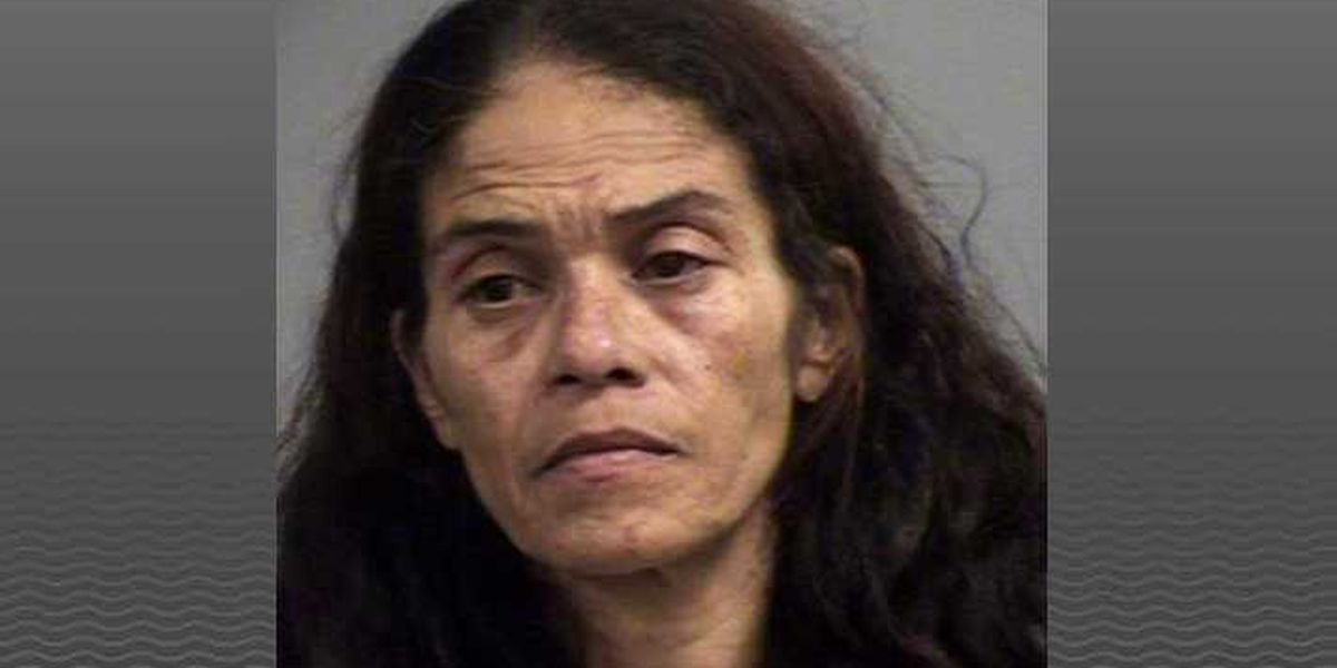 Tips lead police to car in fatal hit-and-run, driver turns herself in
