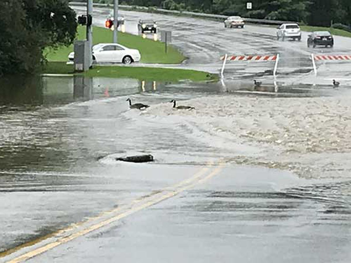 Continuous downpour takes a toll on Louisville roads