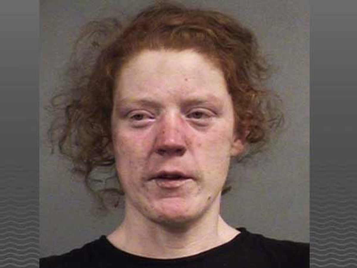 Woman accused of setting tent in homeless camp on fire