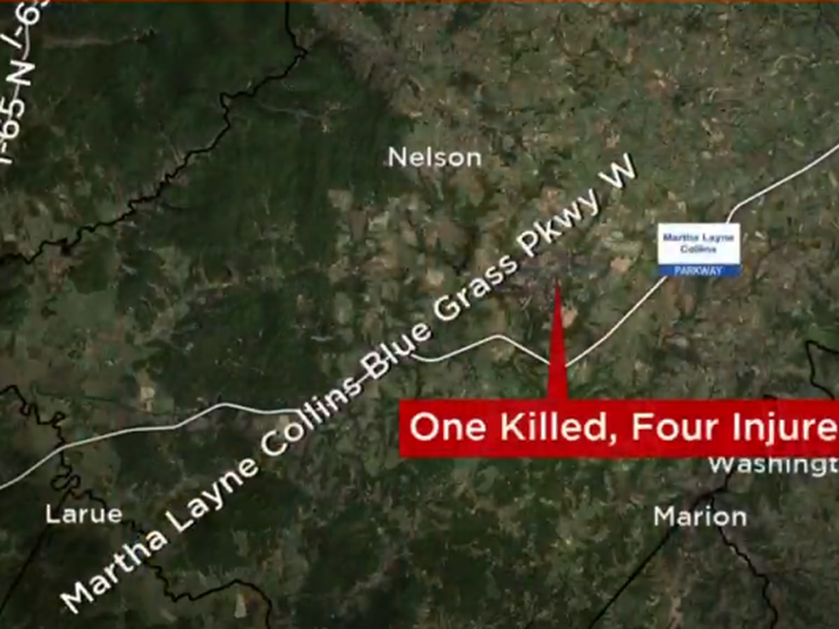 One killed in Nelson County crash