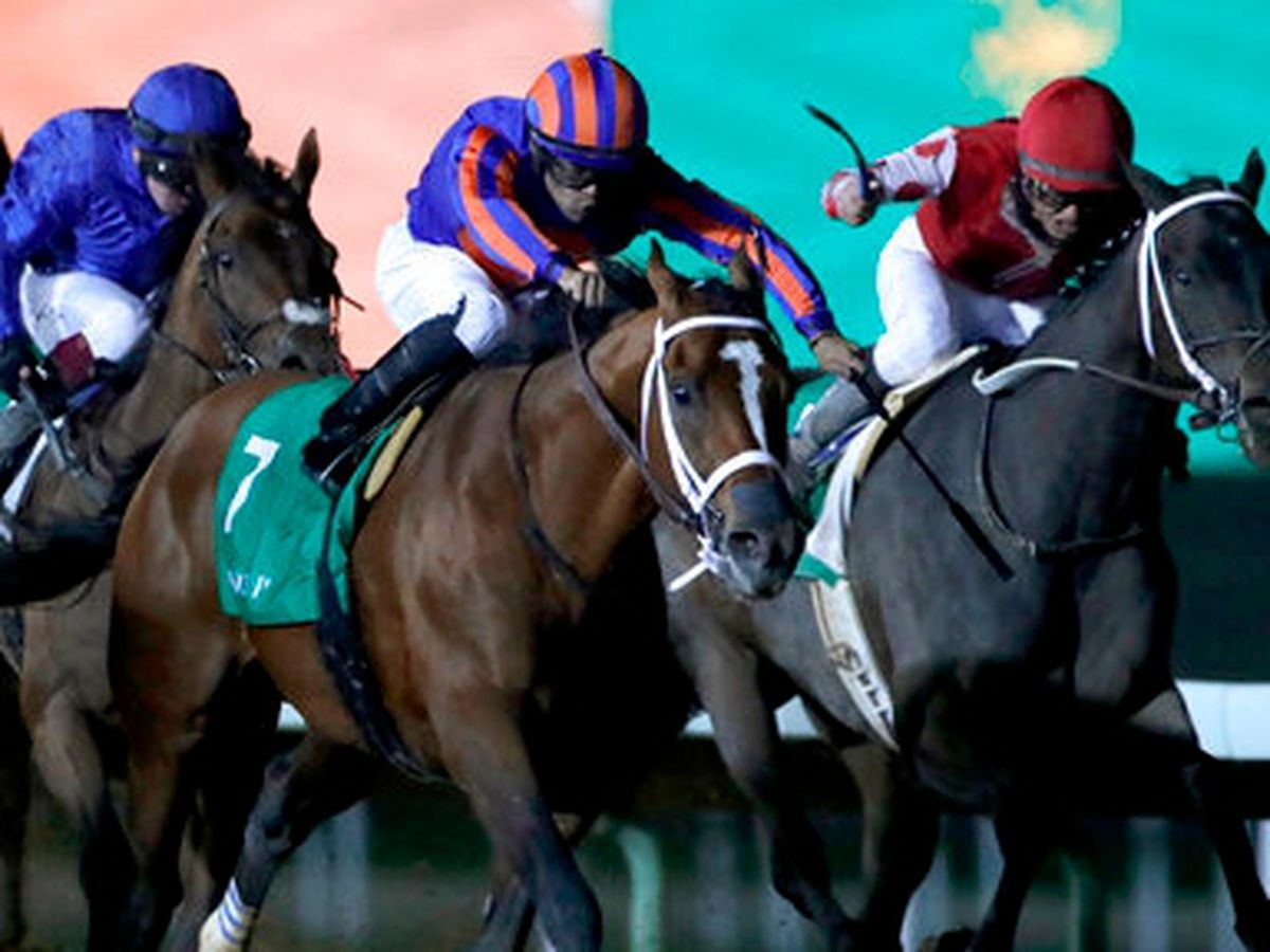 Respect the law ! Tiz the Law romps in Florida Derby