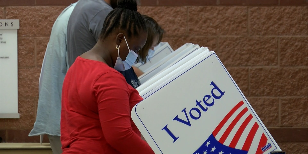 Nearly 90 potential voter fraud complaints filed on Election Day, 338 overall