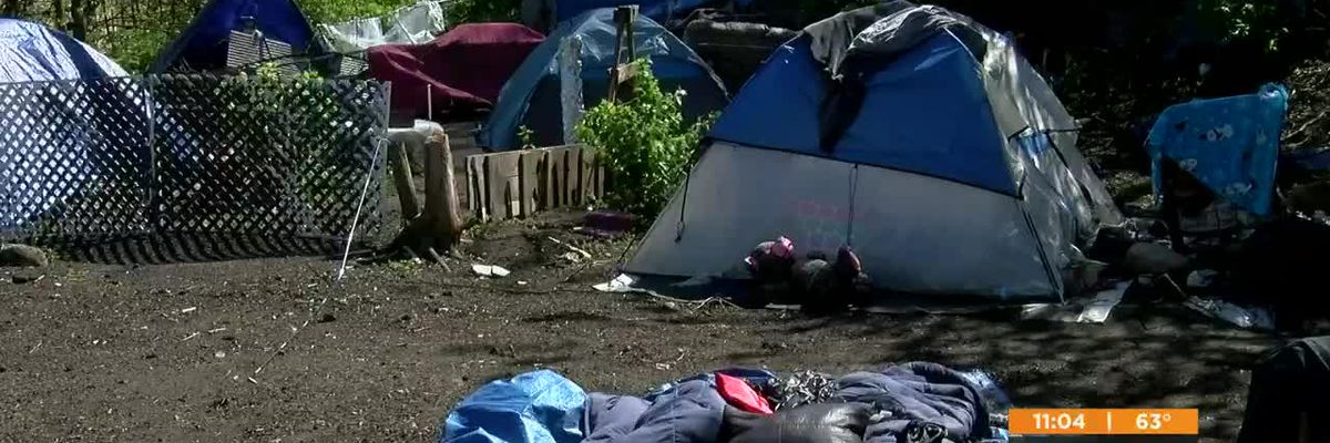 Homeless camp forced to shut down by end of month