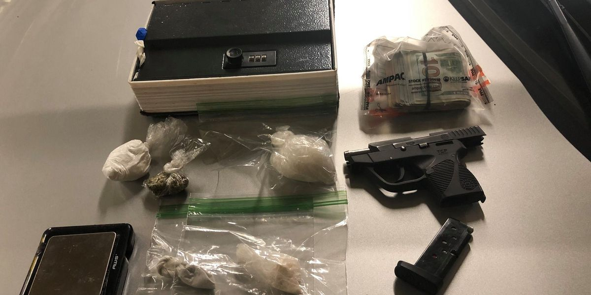 LMPD finds drugs hidden in fake dictionary