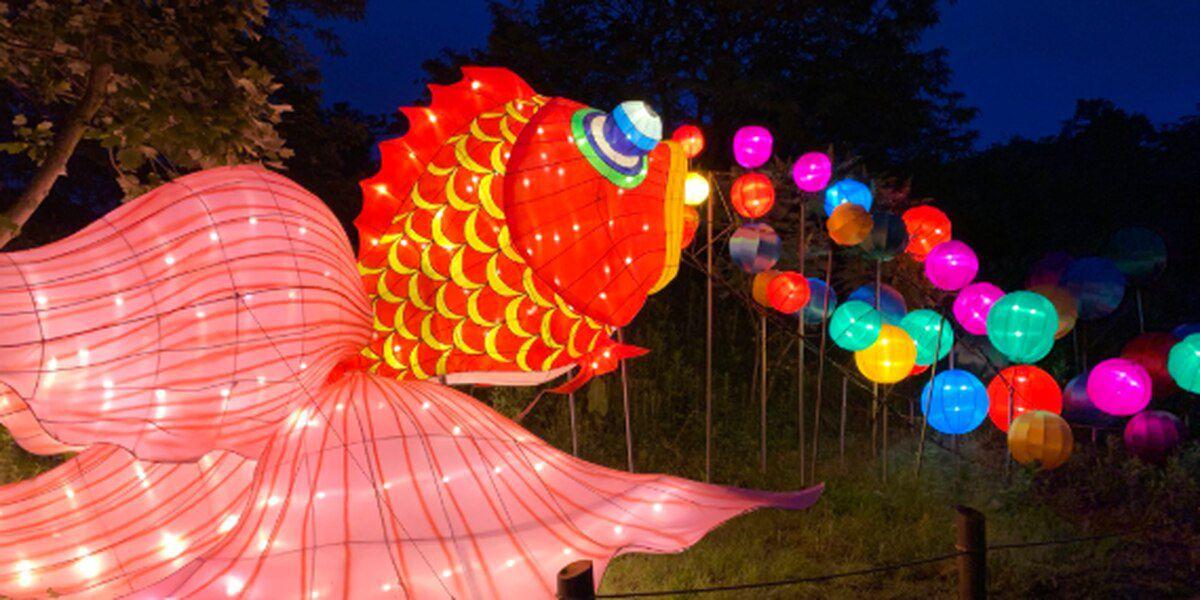 Louisville Zoo in talks to extend postponed Asian Lantern Festival