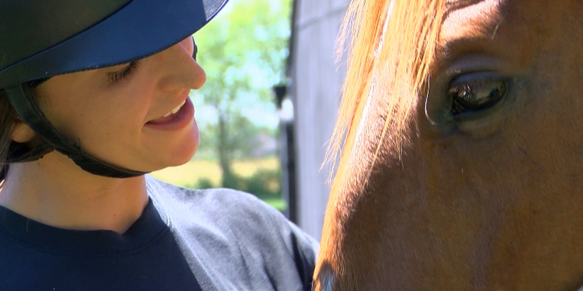 Retired racehorse beats impossible odds