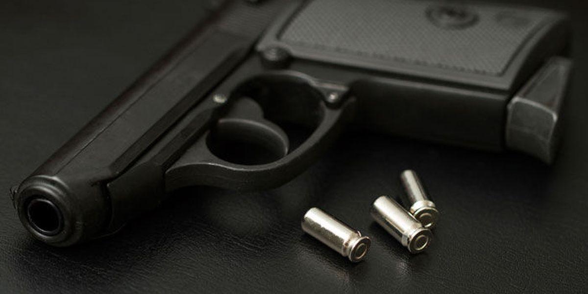 Student brings loaded handgun into Lexington high school