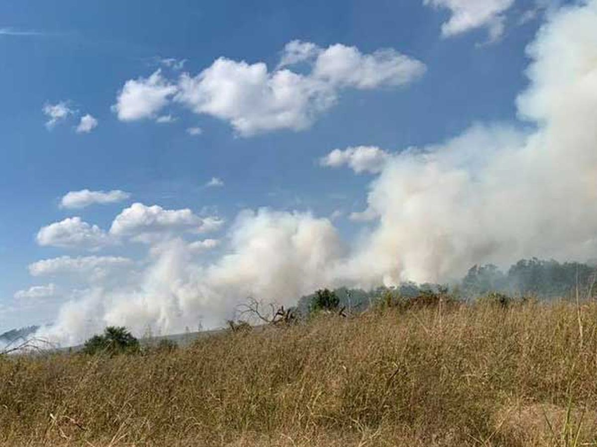 100 acres burned in Nelson County field fire