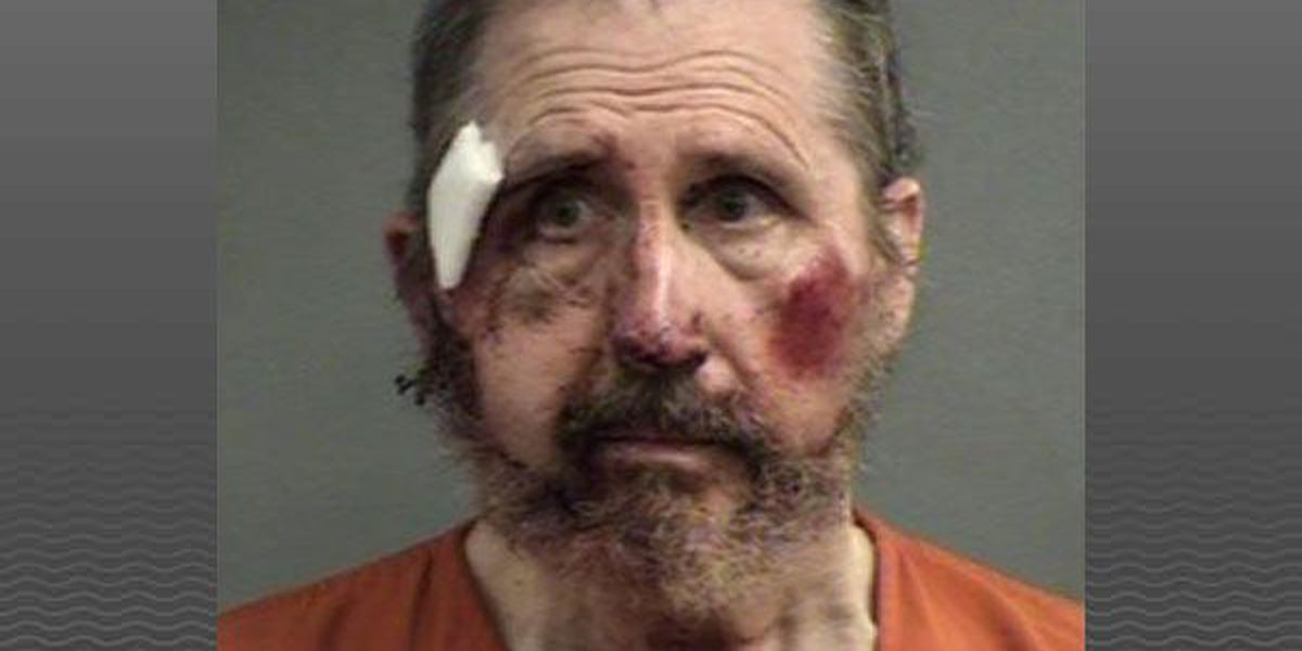 Man charged with firing air rifle at officers, resisting arrest