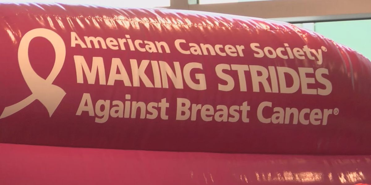 Registration for Making Strides Against Breast Cancer walk now open