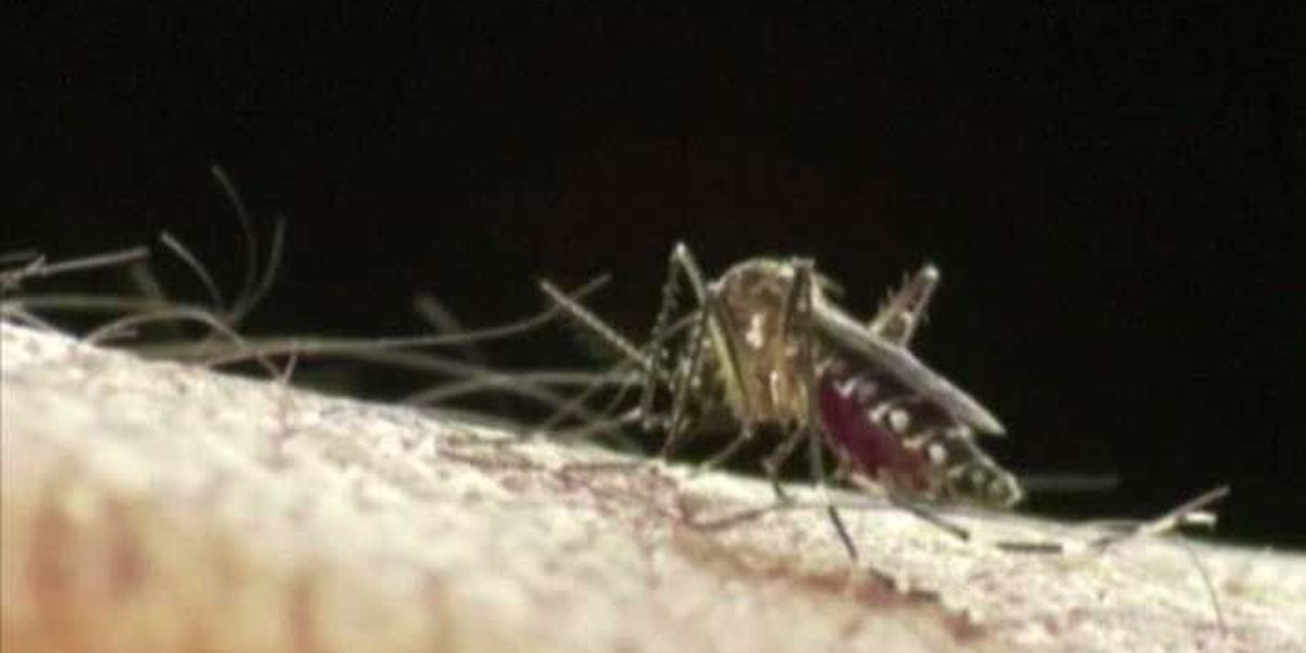 Mosquitoes with West Nile Virus found in So. Indiana
