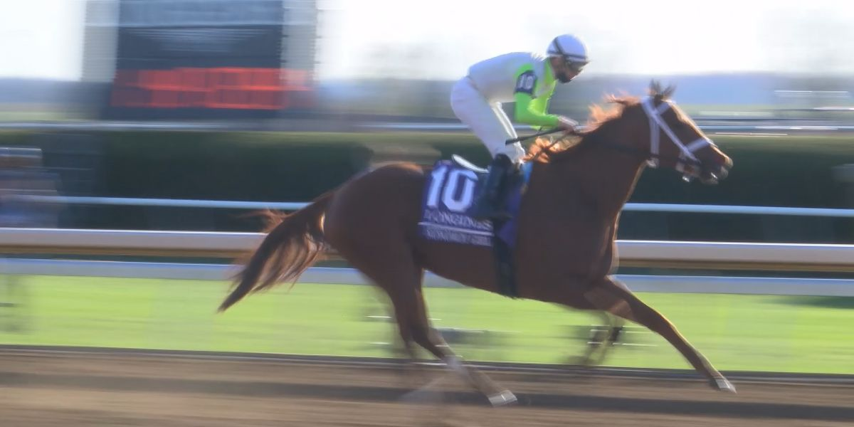 Monomoy Girl wins the Breeders' Cup Distaff, BC win #4 for Brad Cox in 2020