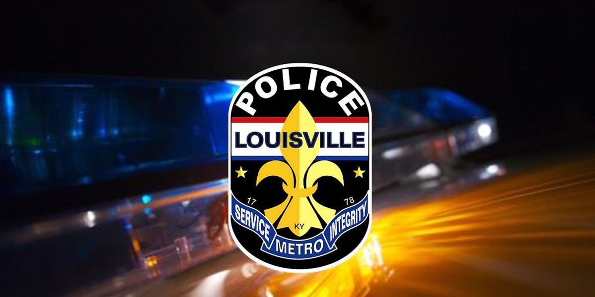 A closer look: LMPD protocol allows hand strikes to de-escalate during arrests