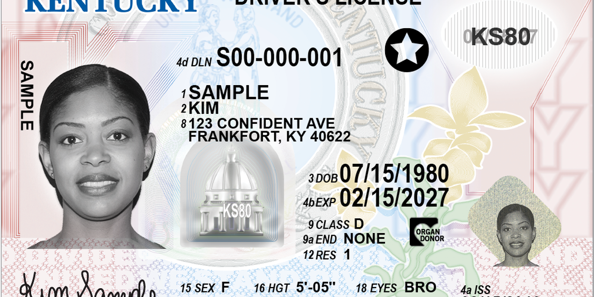 New look, options for KY driver's licenses and IDs unveiled