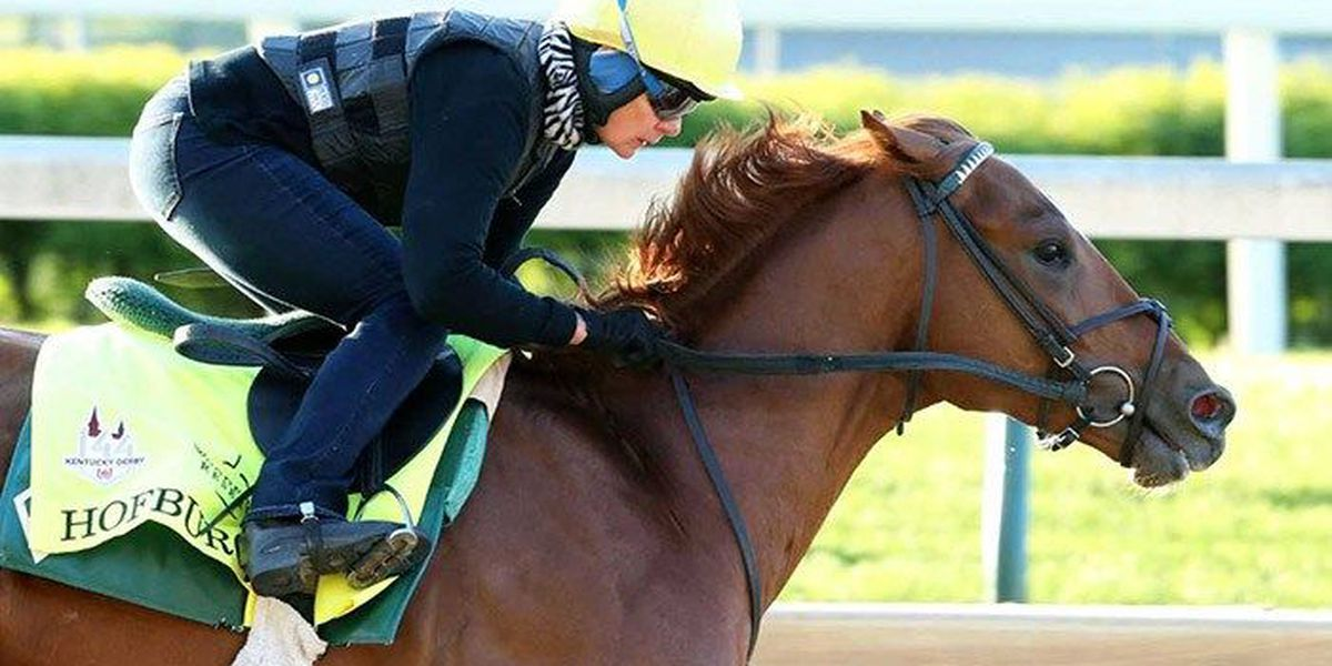 Hall of Famer Mott likes his lightly-run entry Hofburg