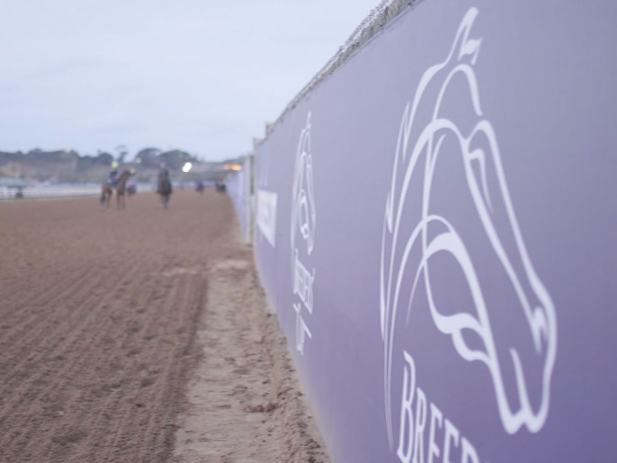 Breeders' Cup economic impact a distant second to Derby