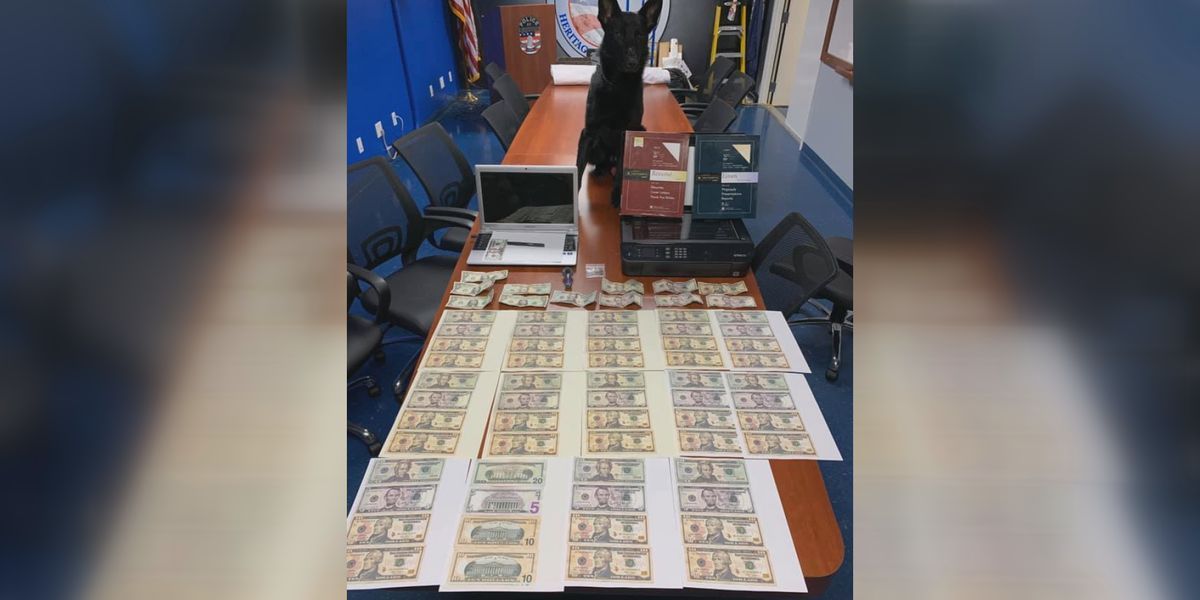 K-9 officer Bane alerts Mount Washington Police to illegal narcotics, counterfeit money