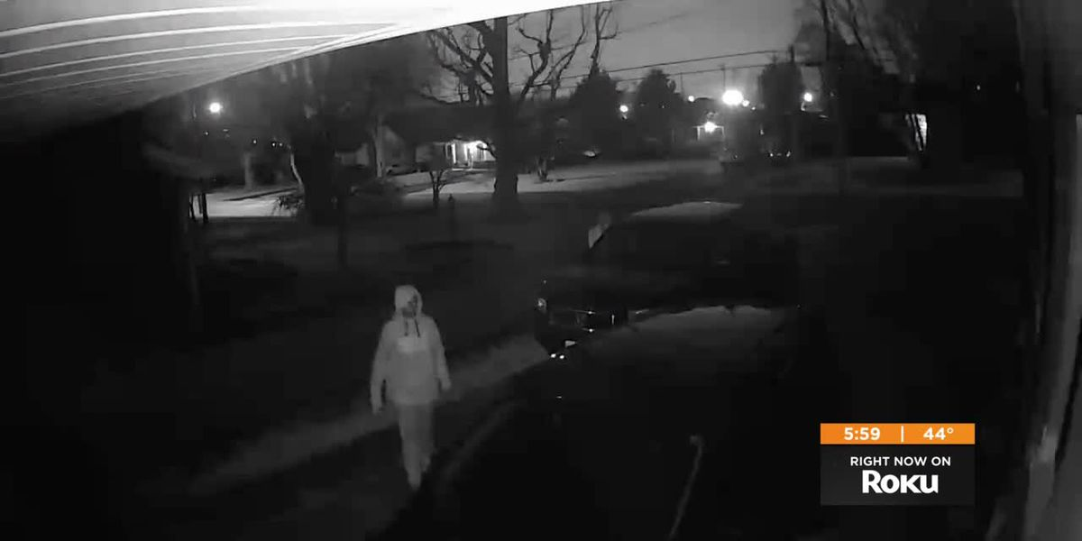 LMPD asks public for pictures, video of car thefts, vandalism in southern Louisville