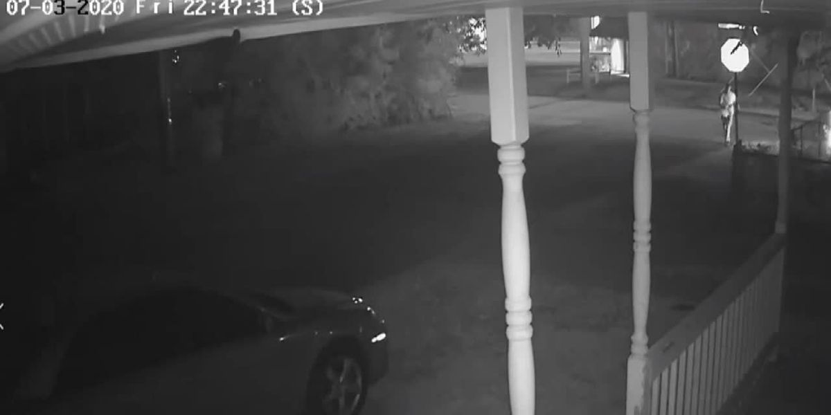 Evansville police looking for arson suspect who reportedly threw Molotov Cocktail at home