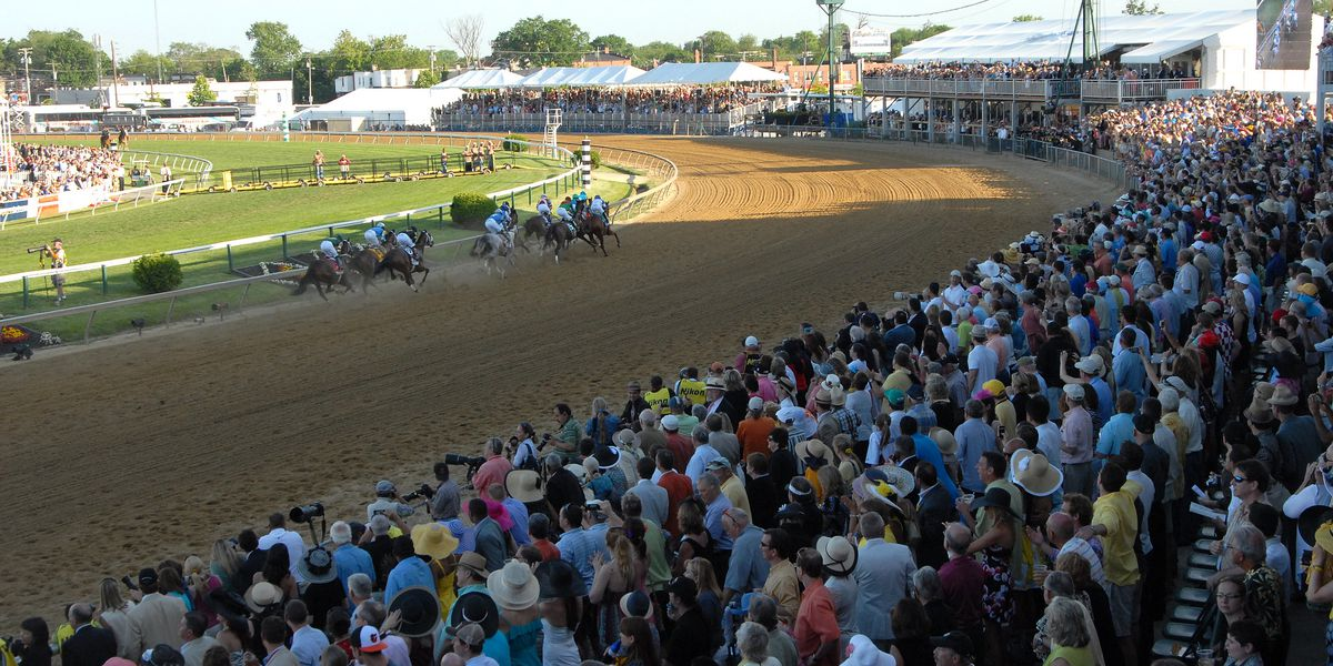 Horse dies at Pimlico day before Preakness