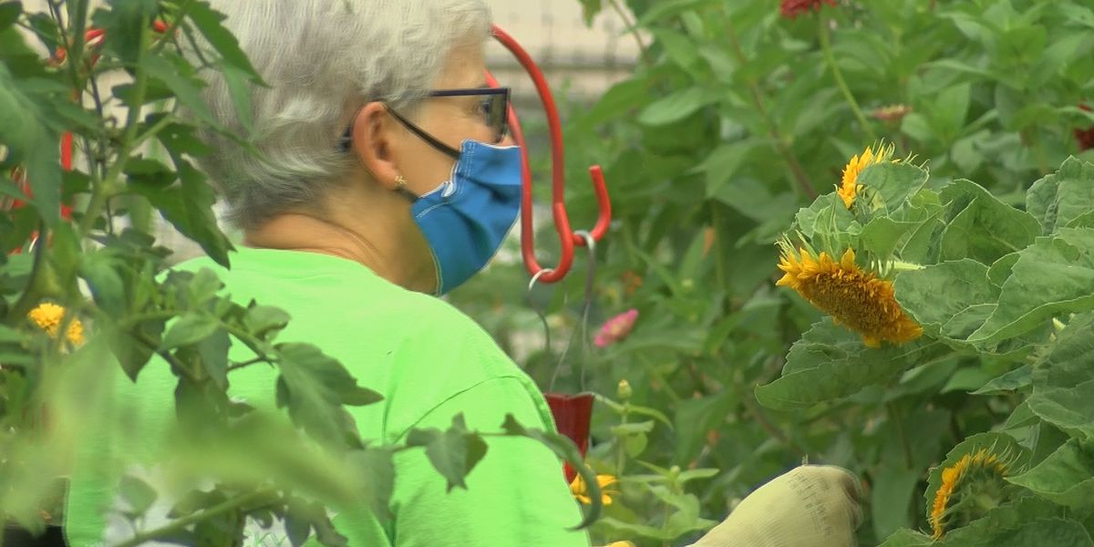 Retirement community members get hands dirty for safe pandemic activity