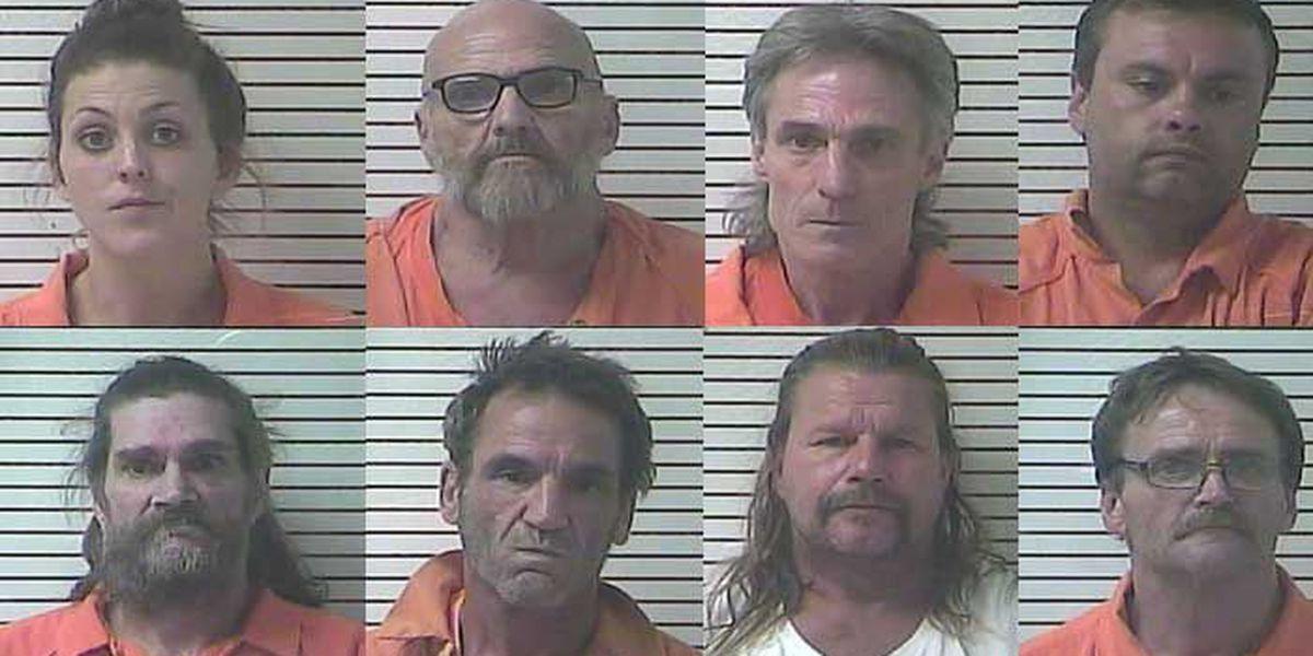 8 arrested in drug bust spread across Hardin County