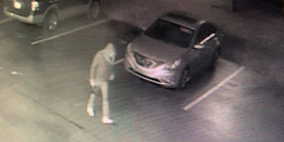 Hillview tire shop asks for community's help to catch catalytic converter thief