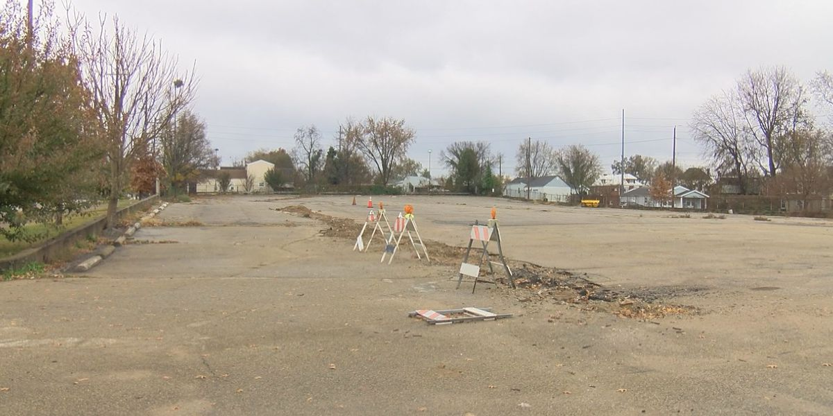 Paristown Pointe development for 22 new homes approved, heads to Metro Council