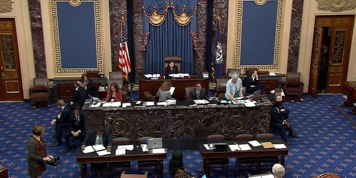 Senate passes bill making animal cruelty a federal crime