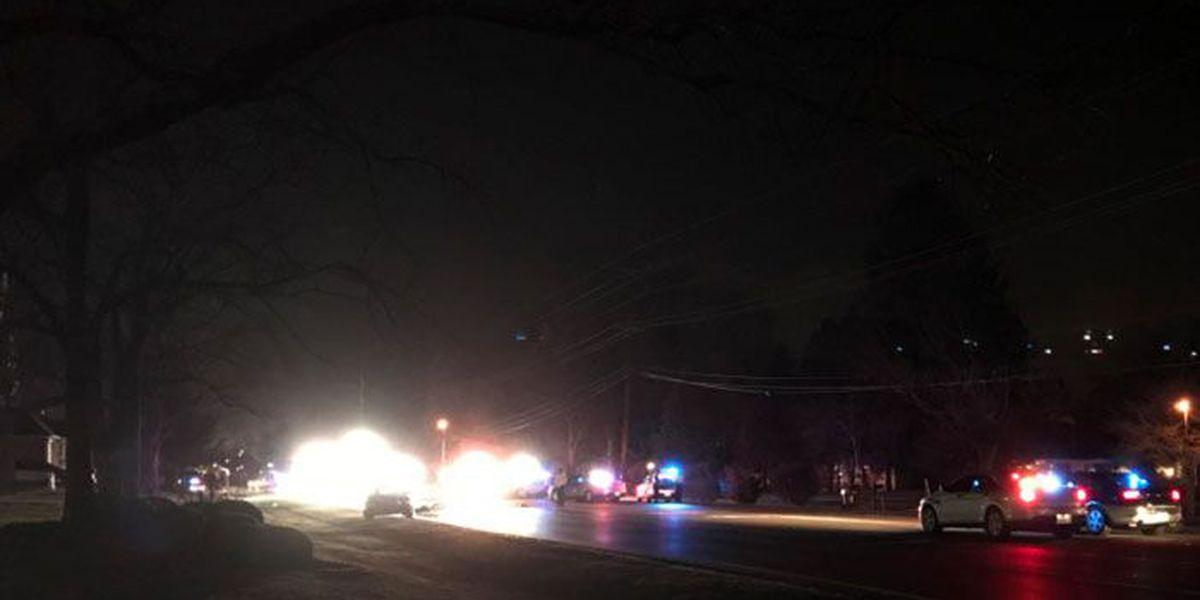 Moped driver killed in crash on Shelbyville Road identified