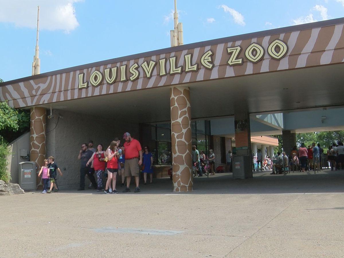 Louisville Zoo requests more funding, exploring revenue opportunities