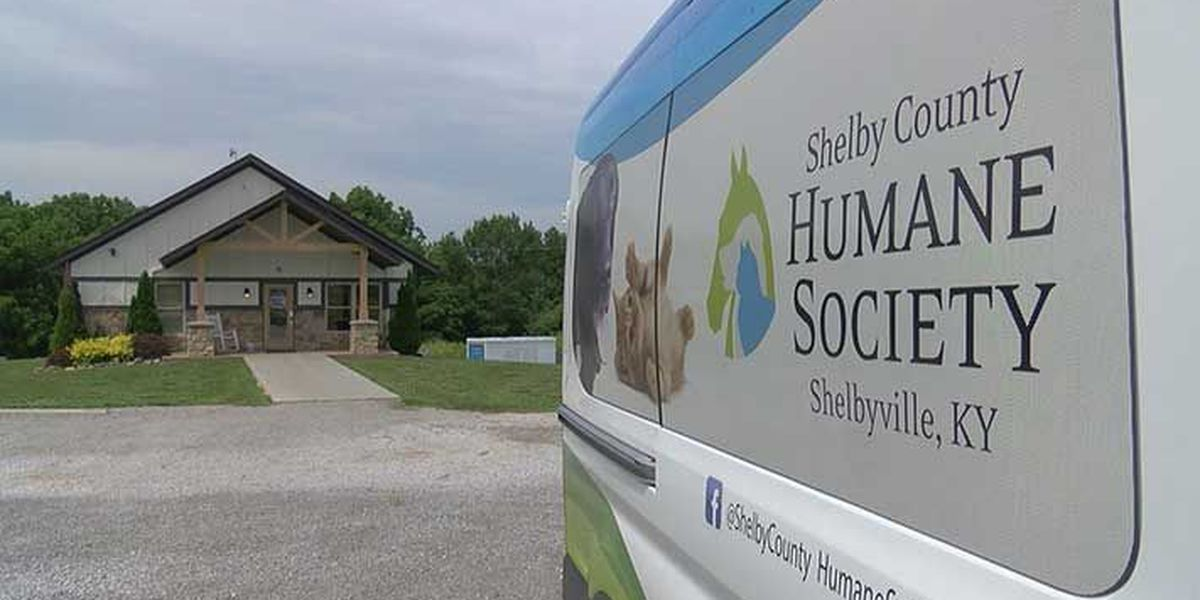 Shelby County Humane Society investigates possibly hundreds of thousands in missing funds