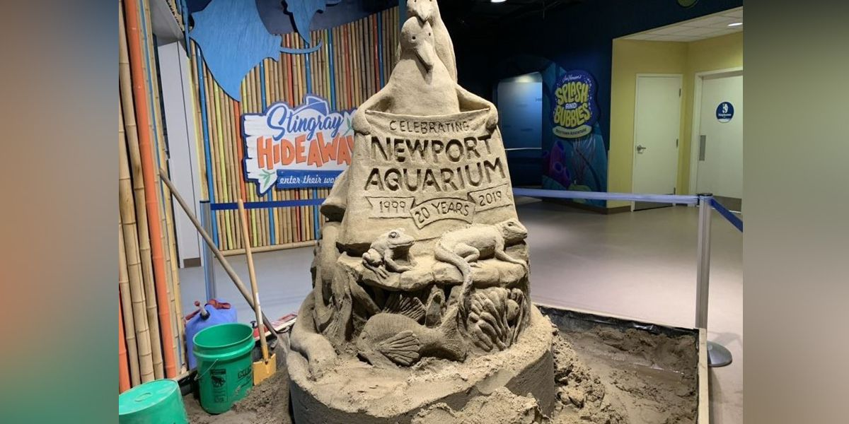 Giant sea creature sand sculptures come to Newport Aquarium