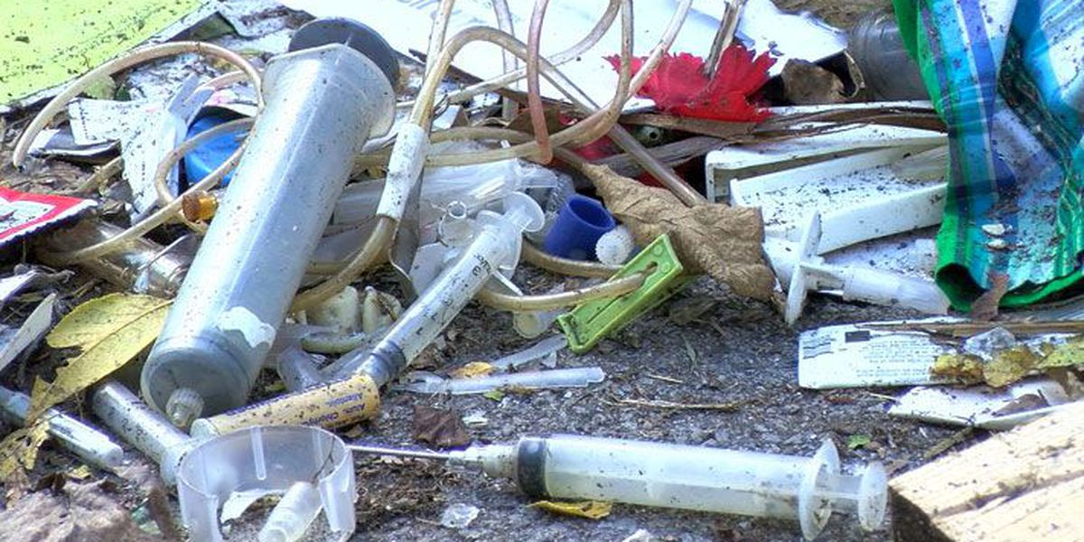 Trash pile filled with food, old needles plagues Algonquin neighborhood