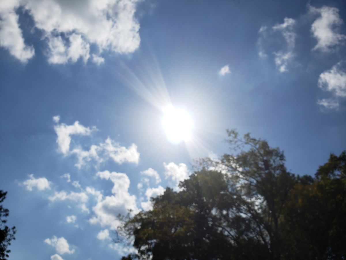FORECAST: Sunny, pleasant day before a midweek cooldown