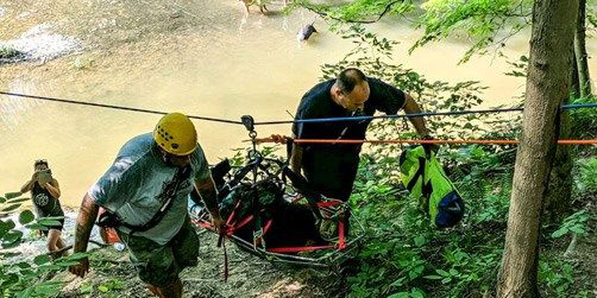 Clarksville fire crew rescues heat-exhausted dog at Lapping Park