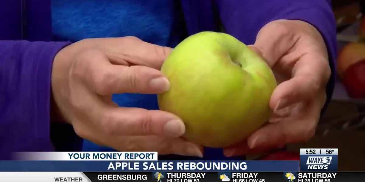 Your Money: Apple sales up, Grape Nuts shortage over, Small business relief, Disney+ price increase