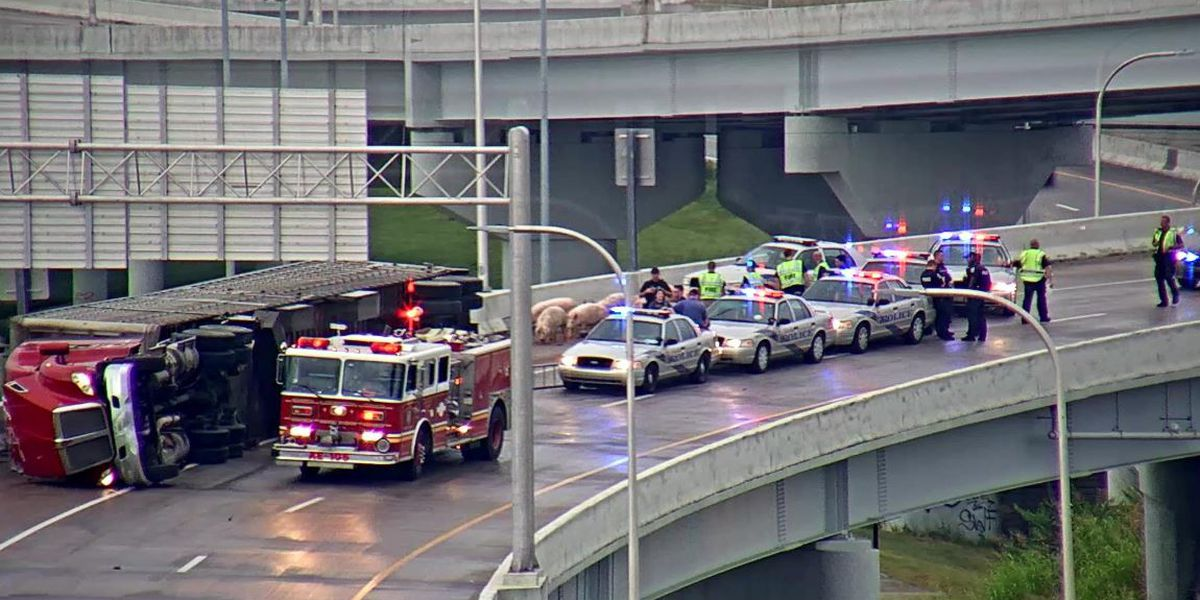 I-65 ramp in downtown Louisville reopened after semi overturns spilling pigs