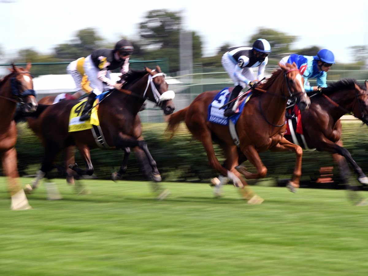 Horseracing Integrity and Safety Act passes US House of Representatives