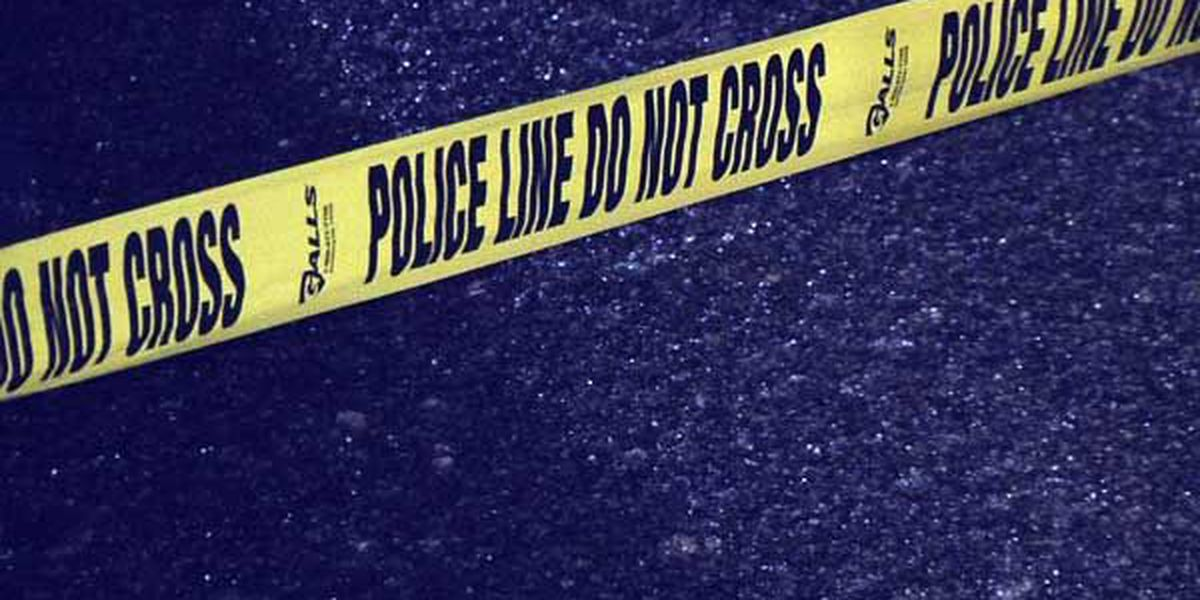 Pedestrian hit, killed by train near Dixie Hwy and Valley Station Rd