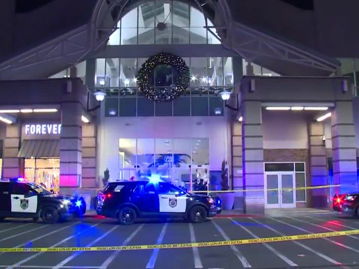 2 shot, killed at Northern California mall on Black Friday