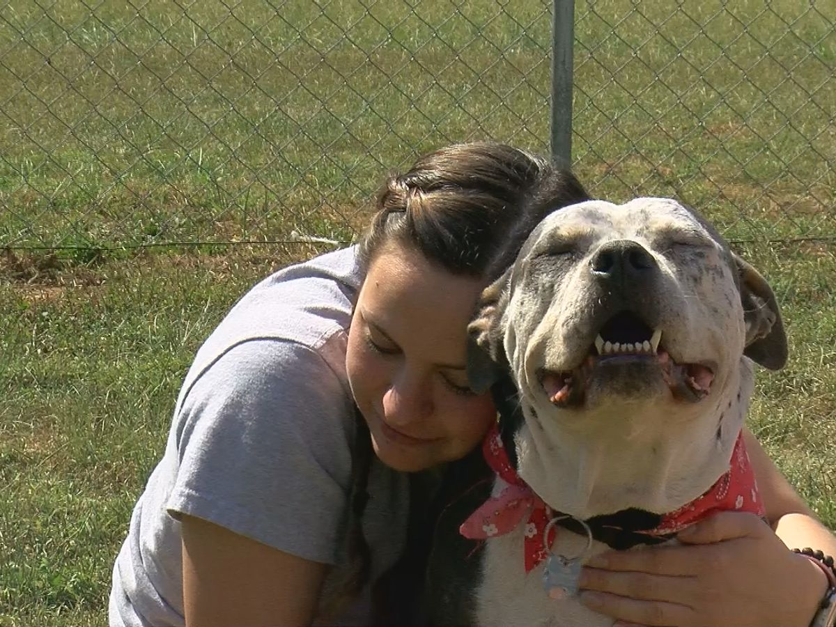 Indiana soldier reunites with four-legged best friend after a year
