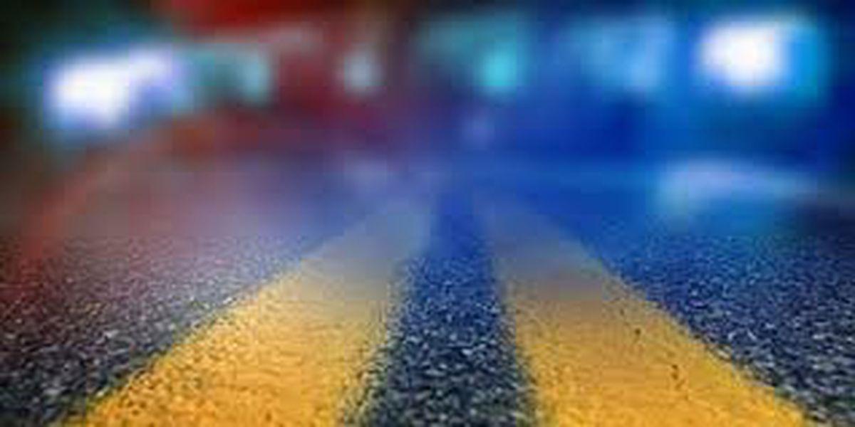 Louisville man killed in Bullitt County crash